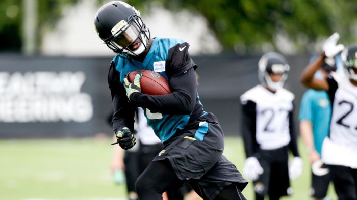 T.J. Yeldon rushed for more than 3,000 yeards and 37 touchdowns during his time at the University of Alabama. The Jaguars are hoping he brings stability to a backfield that needs it. (Photo by John Raoux)